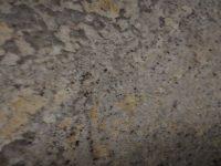 Crema Persa – Granite stone