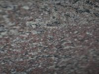 Violleta Tropical - Granite stone